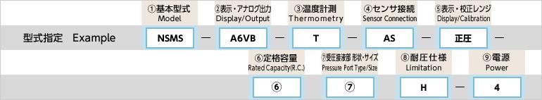 型式指定例